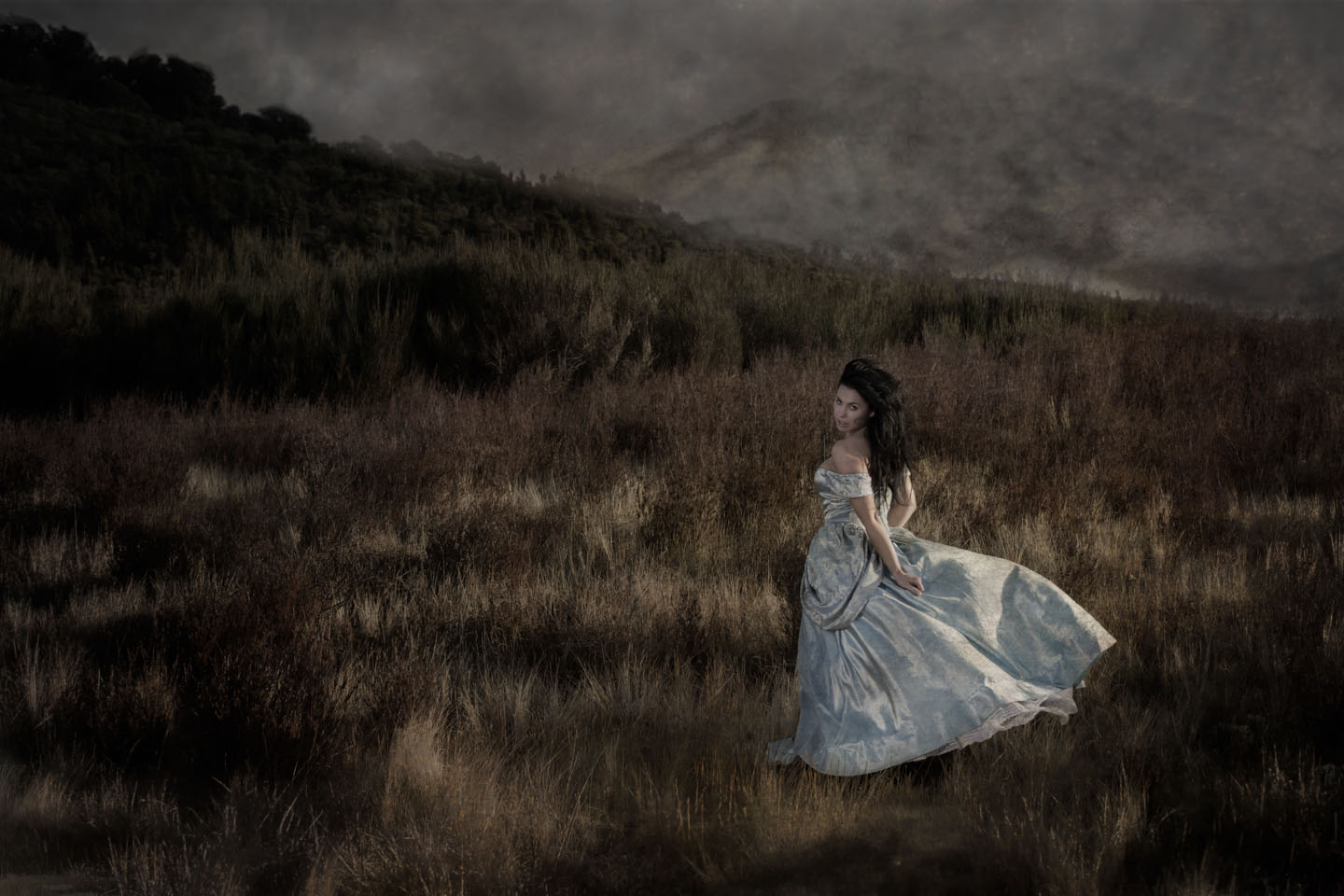 painterly photo of a women in a blue ball gown in the wilderness