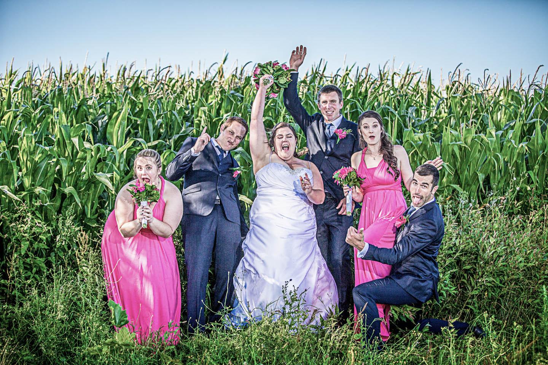 Wedding Matamata cornfields