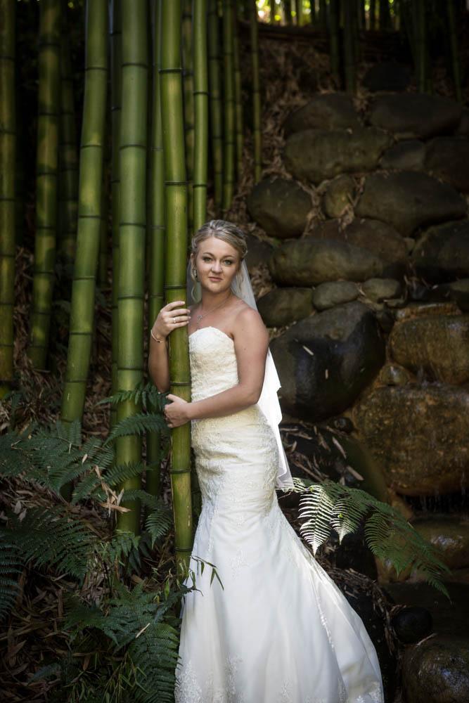 bride embracing the giant bamboo at Fountain Gardens Omokoroa