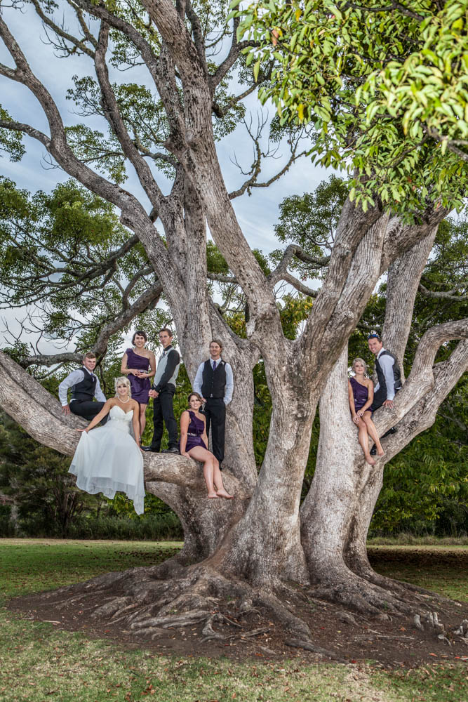 the entire bridal party in a tree in Kerikeri