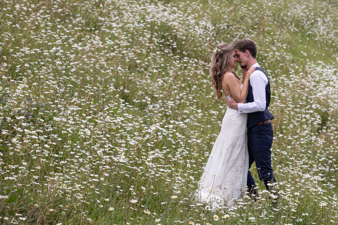 bride and groom in the daisy fields